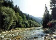 Горные реки черемош